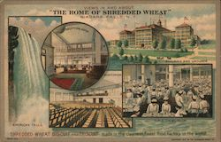Shredded Wheat Advertisement - Views in and About Niagara Falls, N.Y. Postcard