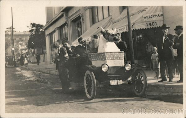 1922 Shriners around a car with a cow decoration California