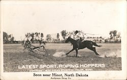 Latest Sport, Roping Hoppers; Seen near Minot, North Dakota, Anderson Drug Co. Postcard