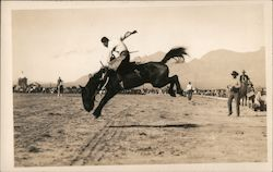 Man riding a bucking bronco Postcard