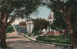 Row of Fraternity Houses Postcard
