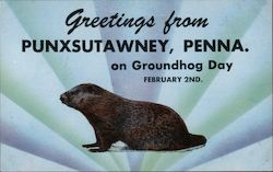 Greetings from Punxsutawney on Groundhog Day