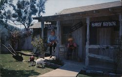 Ma and Pa Kettle's Animal farm at the visitors center at Universal Studios Postcard