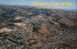 Aerial View of California State College Postcard