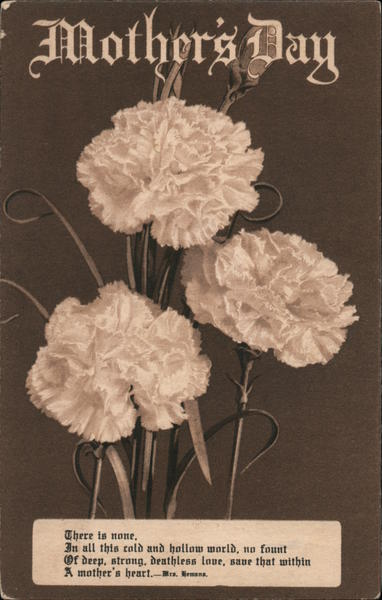 Mother's Day - Carnations