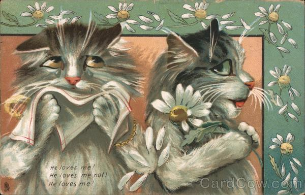 He Loves Me! He loves me not! He Loves me! - Cats and Daisies