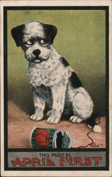 It Must Be April First - Dog with Tomato Can Postcard