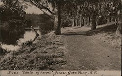 """Chain of Lakes"" - Golden Gate Park J-125 Postcard"
