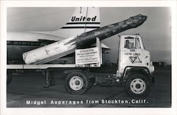 Midget Asparagus from Stockton, Calif. Postcard