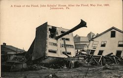 John Schultz' house after the flood, May 31st 1889 Postcard