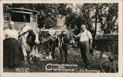 J.C. Berrang, Connecticut to California with Wagon & Oxen Postcard