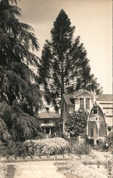 Burbank Home and Greenhouse Postcard