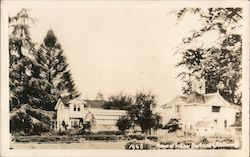 Home of Luther Burbank Postcard