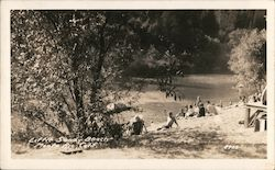 Little Sandy Beach, Bohemian Grove Postcard
