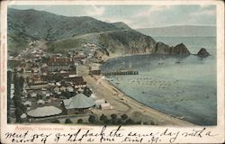 Avalon Postcard
