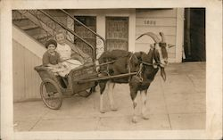 Two Girls in a Wicker Goat Cart,1626 10th Avenue Postcard