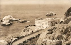 Cliff House and Seal Rooks Postcard