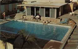 Motel Town House pool Postcard