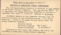 Write In Campaign for Democratic County Committeemen. Postcard