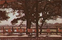 Villa Felice Restaurant. Oaks, pies and redwoods outdoor patio Postcard