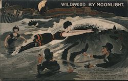 Wildwood by moonlight. Postcard