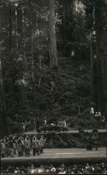 Bohemian Grove: Stage play at an outdoor theater in the woods