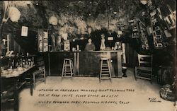 Interior of Fraterna Monarch-Giant Redwood Tree, Lilley Redwood Park Postcard