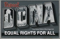 Repeal DOMA the deny others marriage act. Equal rights for all. Postcard