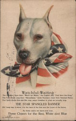 Watchful waiting. Dog with U.S. flag tied around neck. Postcard