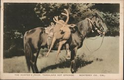 The Hunter's Prize, Tassajara Hot Springs Postcard