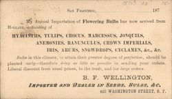 B.F. Wellington, Importer and Dealer in Seeds, Bulbs, & C. Postcard
