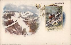 Muir Glacier, Packing Over the Hill Postcard