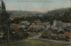 A view of portion of the Town of Mill Valley, California Postcard