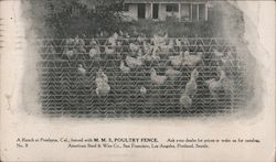 Ranch fenced with M.M.S. Poultry Fence Postcard
