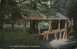 Old Mill, Marin County Postcard
