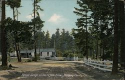 Forest Lodge, 17 Mile Drive Postcard