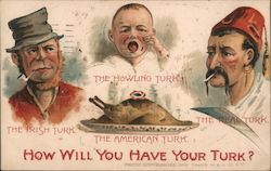 How will you have your Turk Postcard