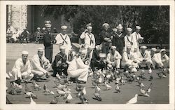 Group of Navy Sailors and Pigeons Postcard