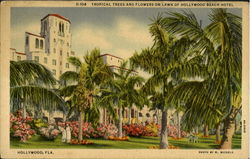 Tropical Trees And Flowers On Lawn Of Hollywood Beach Hotel