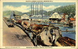 Pacific Lumber Company, Redwood Highway