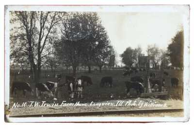 RPPC J.W. Irwin Farm House Cows In Pasture Longview Illinois Champaign County
