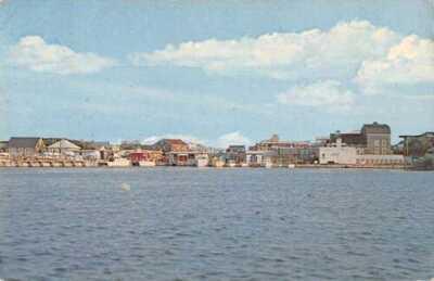 Fire Island New York Cherry Grove Vintage Postcard AA29891