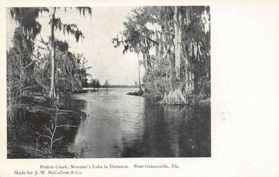 FL 1900's FLORIDA Prairie Creek & Newnan's Lake Gainesville FLA - Alachua Co