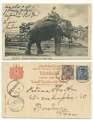THAILAND / SIAM - USED PICTURE POSTCARD - WORKING ELEPHANT
