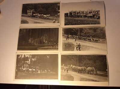 6 different Photo Postcards - Circus Parade, Sideshow Amherst, Mass. Circ. 1900