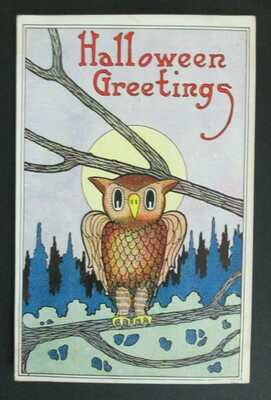 Halloween Greetings Owl Sitting on Branch Postcard