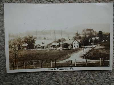 VIEW IN TUSSEYVILLE CENTRE COUNTY PA RPPC POSTCARD NEAR CENTRE HALL