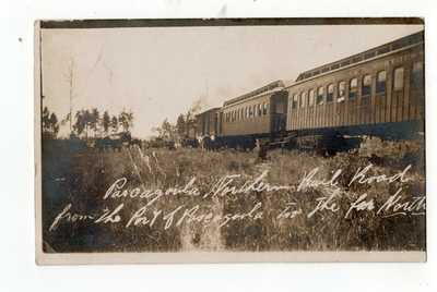 Pascagoula Northern Railroad from Port of Pascagoula 1910 Real Photo Postcard