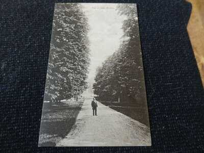 The Avenue Welton Wilton Postcard Salisbury Wiltshire  - 35540