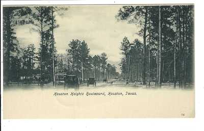 Houston Texas Postcard Houston Heights Blvd.  Private Mailing Card 1898 vintage